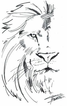 lion sketch tattoos aslan lion tattoo tattoos of lions lion drawing Tattoo Design Drawings, Tattoo Sketches, Drawing Sketches, Tattoo Designs, Tattoo Ideas, Drawing Ideas, Lion Tattoo Design, Animal Drawings, Pencil Drawings