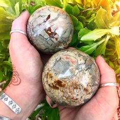 Ibis Jasper Spheres for ancient wisdom, profound healing, and Akashic records access Crystal Sphere, Crystal Grid, Crystal Ball, Crystal Healing, Buy Crystals, Stones And Crystals, Gem Stones, Minerals And Gemstones, Rocks And Minerals