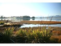Miro Cottage at The Apple Pickers' Cottages, Mapua-Nelson UPDATED 2020 - Tripadvisor - Bronte Vacation Rental Anniversary Getaways, Tasmania, Trip Advisor, Cottage, Vacation, Night, Plants, Cottages, Cabin
