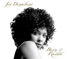 Joy Denalane - Born & Raised (2006) Nesola Records. Probably the best neo-soul album you've never heard. Highly recommended. Get it while you can.