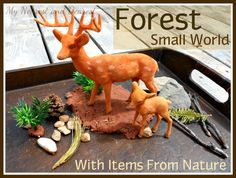 Forest small world with items from nature. A simple small world that the kids can put together themselves. Great for imaginative play and language development. Sensory Bins, Sensory Activities, Sensory Play, Language Activities, Indoor Activities For Kids, Outdoor Activities, Small World Play, Kids On The Block, Learning Through Play