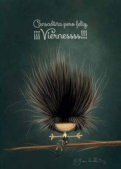 Cansadiña pero feliz!!! Viernes. Puro Pelo by Juan Chavetta!!!