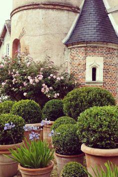 Planter Garden, Outdoor Spaces, Plants, Color, Outdoor Living Spaces, Colour, Plant, Outdoor Rooms, Plant Containers