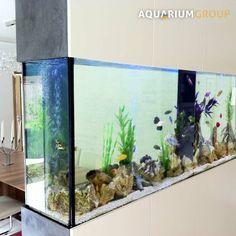 freestanding room divider fish tank kitchen dining room closeup