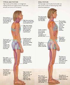 posture에 대한 이미지 검색결과