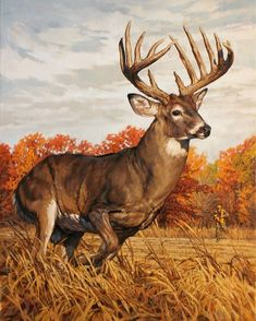 ryan_kirby_original_whitetail_deer_painting_running_and_gunning_outdoor_life_cover 4 3 9 5 4 Wildlife Paintings, Wildlife Art, Animal Paintings, Animal Drawings, Deer Paintings, Hirsch Wallpaper, Deer Wallpaper, Sparkle Wallpaper, Whitetail Deer Pictures