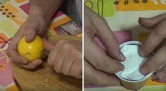 Aqui você vai aprender como plantar as sementes de limão no seu jardim para fazer crescer uma linda árvore que vai te dar gostosos limões. E para começar você vai precisar justamente de um... limão!…