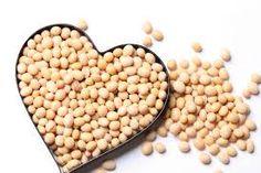 Media Agri: Soybean Plant
