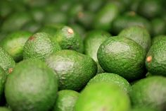 A California Avocado Behind-the-Scenes Tour