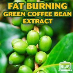 köpa green coffee bean extract