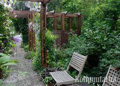 Puinen pergola jäsentää kivasti pihapolkua ja luo puutarhalle raamit. Kompostikin maastoutuu kätevästi pergolan pylväisiin kiinnitettyyn säleikköön.