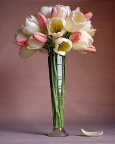 Tall Tulips by marthastewart #Flowers #Tulips