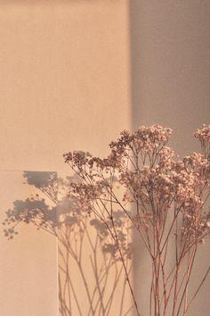 Neutral Wallpaper, Purple Wallpaper Iphone, Phone Wallpaper Images, Plant Wallpaper, Neon Wallpaper, Iphone Wallpaper Tumblr Aesthetic, Iphone Background Wallpaper, Scenery Wallpaper, Aesthetic Pastel Wallpaper