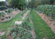 What's Hugelkultur and when would you use it? Pronounced something like: Hoogle-culture, this centuries old method of raised garden beds, has migrated to the west and been eagerly adopted by permaculture fans and those with problem soil and terrain. Hügelkultur (also spelled huegelkultur)...