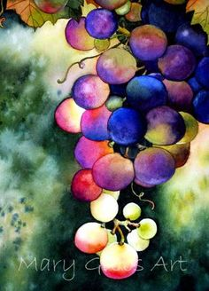 """""""Morning Grapes"""" watercolor by Mary Gibbs"""