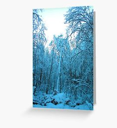 Snow and Shapes  Greeting Card