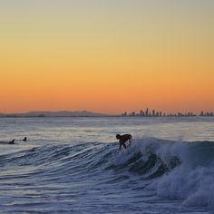 Surfing Point Danger. Coolangatta, Gold Coast Australia. Sunset. (via #spinpicks)