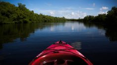 Just off the coast of Florida's Collier County in Ten Thousand Islands and Everglades National Park and in secret coves behinds Wiggins are some of the finest kayaking waters in the country. Everglades National Park, Thousand Islands, White Sand Beach, Light And Shadow, Water Sports, Naples, Kayaking, Outdoor Gear, Trail