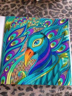pavão livro de colorir por Karoline Moreira: