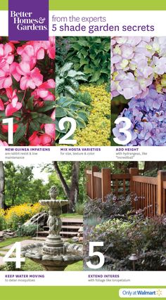 Better Homes U0026 Gardens At The #Walmart #Garden Center #BHGflowers #flowers #