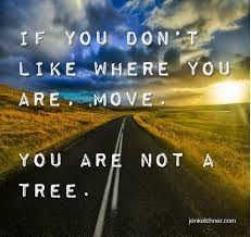 If you don't like where you are, MOVE. You are not a tree...