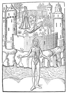 Image from Tradition und Naturbeobachtung in den Illustrationen Medizinischer Handschriften und Frühdrucke vornehmlich des 15. Jahrhunderts (1907) by Karl Sudhoff – a book on the topic of medical illustrations in manuscripts and early printed books (primarily) of the 15th century.