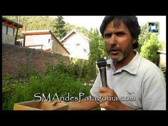 Ecoplant - Cosecha de semillas - Jardines y huertas