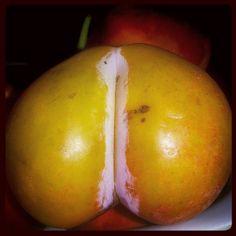 #erik #nature #fruit #plum