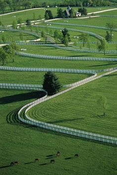 Aerial View Of Donamire Farms in Kentucky OMGosh, breath taking.  How much fun is that?  A horse and horse lover's paradise