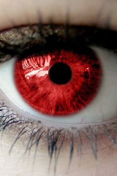 Tarin's eye after the transition The Red Eye is truly cool. Red Eyes Contacts, Aesthetic Eyes, Magic Eyes, Eye Photography, Character Aesthetic, Eye Art, Fantasy, Cool Eyes, Werewolf