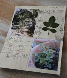 Location & Notes by Patty Van Dorin