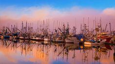 plainpicture Bing New Zealand | ... moored in Newport, Oregon (© Craig Tuttle/Corbis)(Bing New Zealand