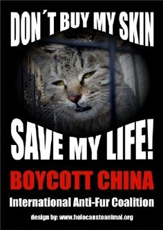 China kills dogs and cats for fur - PLEASE, SIGN : http://www.change.org/petitions/beck-furs-stop-animal-cruelty-stop-selling-fur #auspol  Boycott China Today and Do Not Buy Anything Made In China. All Their Meat and Fish They Sell In America Causes Cancer Too