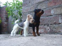 needle felted Fox Terrier & Rottweiler.  these two went to Australia.