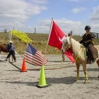 Flags in cones. Trail Riding, Horse Riding, Horse Arena, Horse Exercises, Horse Care Tips, Horse Games, Horse Training Tips, Horse Pattern, Horse Love