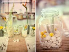 cactus in jar