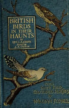 Antique Book Cover in Blue Linen .... British Birds and Their Haunts ~ by Rev. C.A. Johns .... Sixty Four Coloured Plates by William Foster .... #antiquebooks