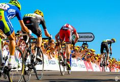 The four contenders of Tour de France victory; Chris Froome (Team Sky) checking how far back Cadel Evans (BMC Racing Team) is. Behind Cadel are Bradley Wiggins (Team Sky) and Vincenzo Nibali (Liquigas Cannondale), Stage 7 Tour de France.