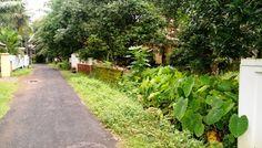 12 Cent Resi Plot at New gardens ,Ayyanthole,
