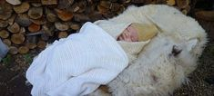 Γιατί οι Σκανδιναβοί βγάζουν τα παιδιά τους να κοιμούνται στο κρύο