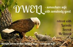 """I have just written a 4 part (or 2 or 3, whatever) retreat series on """"Dwell"""" and would love to bring it to your church or conference or group. Contact me at encouragingwords@snet.net"""