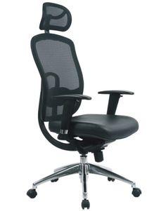 Luxury Desk Chairs