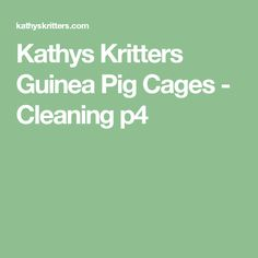 Kathys Kritters Guinea Pig Cages - Cleaning p4