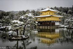 It was snowing as I woke up and the whole city was white. I decided to go to my favorite place in Kyoto and arrived there as the spectacle of the Golden Pavilion under snow was magical. City Buildings, Pavilion, To Go, Snow, Mansions, House Styles, Places, Kyoto Japan, Culture