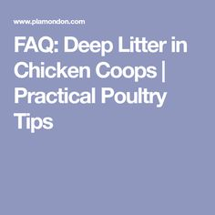 FAQ: Deep Litter in Chicken Coops | Practical Poultry Tips
