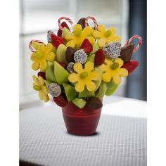Candy Cane Blossoms scent free fruit bouquet are great for all occasions and make great gifts ideas or decorations from a proud Canadian Company. Great alternative to traditional flowers or fruit baskets Christmas Arrangements, Fruit Arrangements, The Last Drop, Free Fruit, Candy Cane, Planter Pots, Great Gifts, Bouquet, Blossoms
