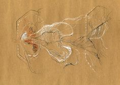 Nikolaus Gansterer, drawings - Google zoeken