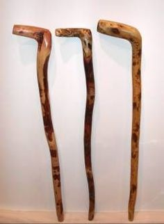 Root handle walking cane