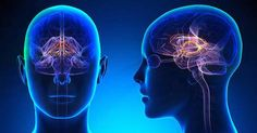 New Ways to Treat Genetic Neurological Diseases