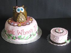 First Birthday!  Marble Cake Chocolate Cream Filler Fluffy Pink Vanilla Buttercream Icing Fondant Accents Owl is Rice Crispy Treats covered in Fondant Smash Cake to Match